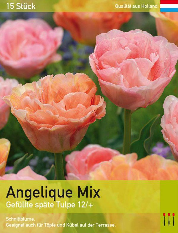 Angelique Mix
