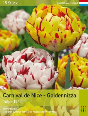 Carnaval de Nice - Goldennizza