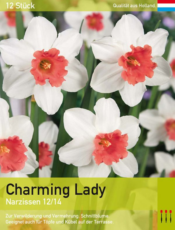 Charming Lady