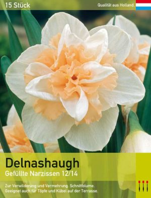 Delnashaugh