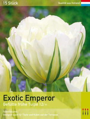 Exotic Emperor