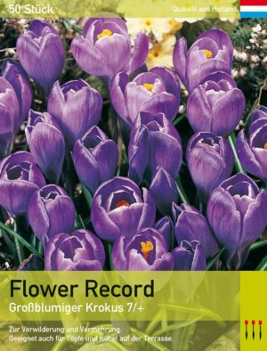 Flower Record