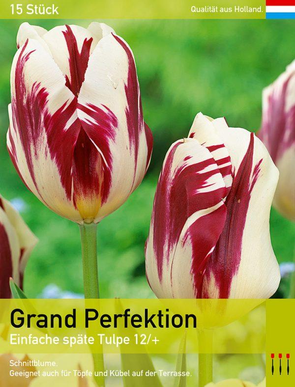 Grand Perfektion