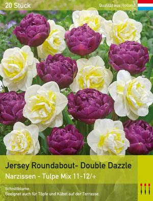 Jersey Roundabout- Double Dazzle