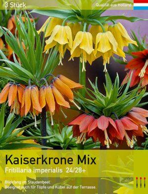Kaiserkronen Mix
