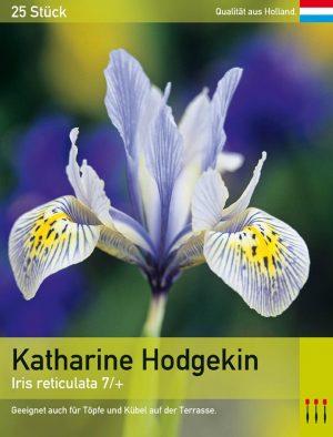 Katharine Hodgekin