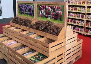 Lagerung von Blumenzwiebeln