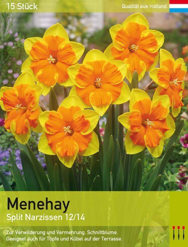 Menehay