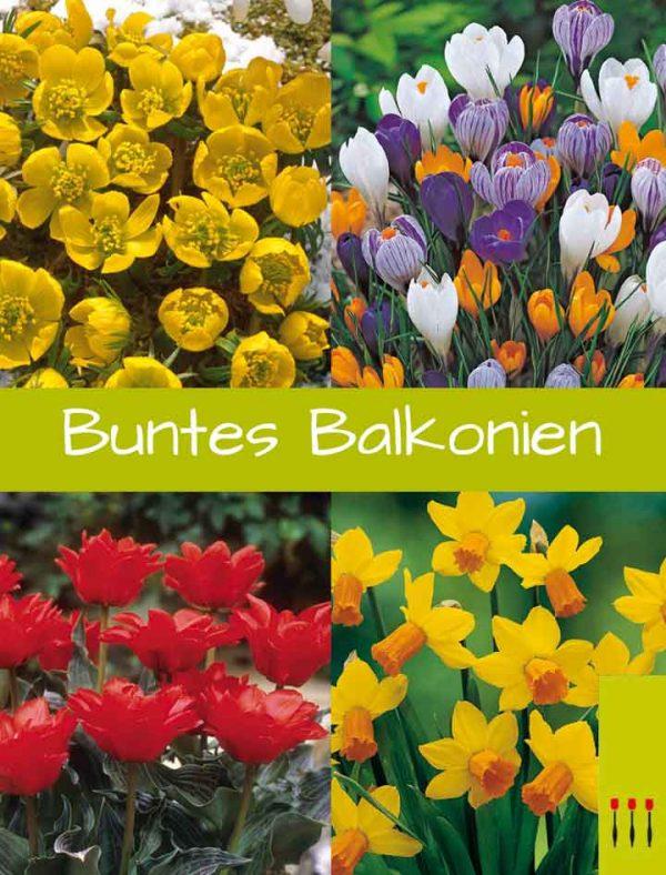 Paket Buntes Balkoniwn