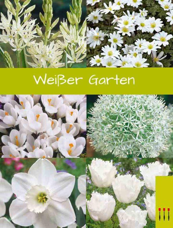 Paket Weißer Garten