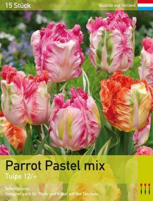 Parrot Pastel Mix