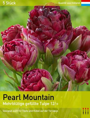 Pearl Mountain