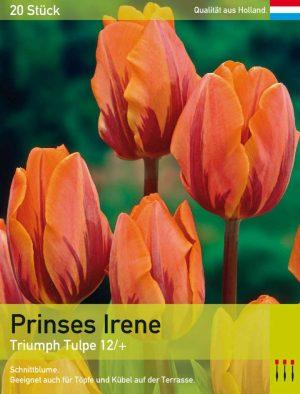 Prinses Irene