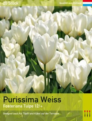 Purissima Weiss