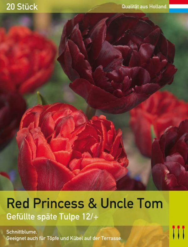 Red Princess & Uncle Tom