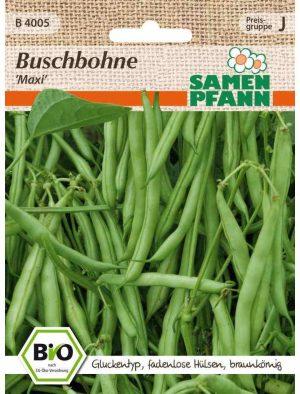 Bio Buschbohne Maxi