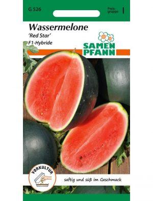 Wassermelone Red Star F1