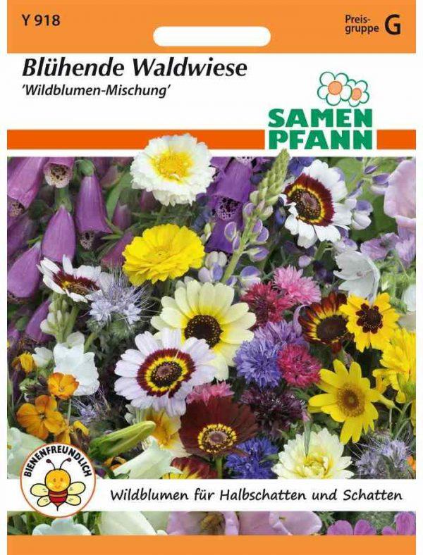Blühende Waldwiese Wildblumen Mischung