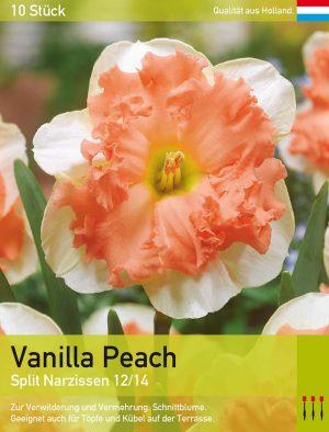 Vanilla Peach